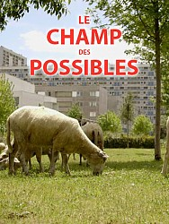LE CHAMP DES POSSIBLES de Marie-France Barrier